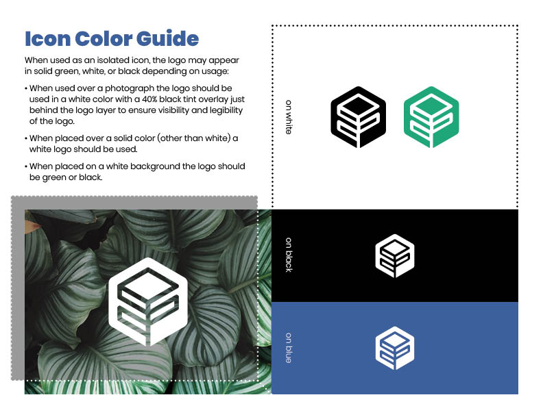 Maricarry Brand Guide: Icon Colors
