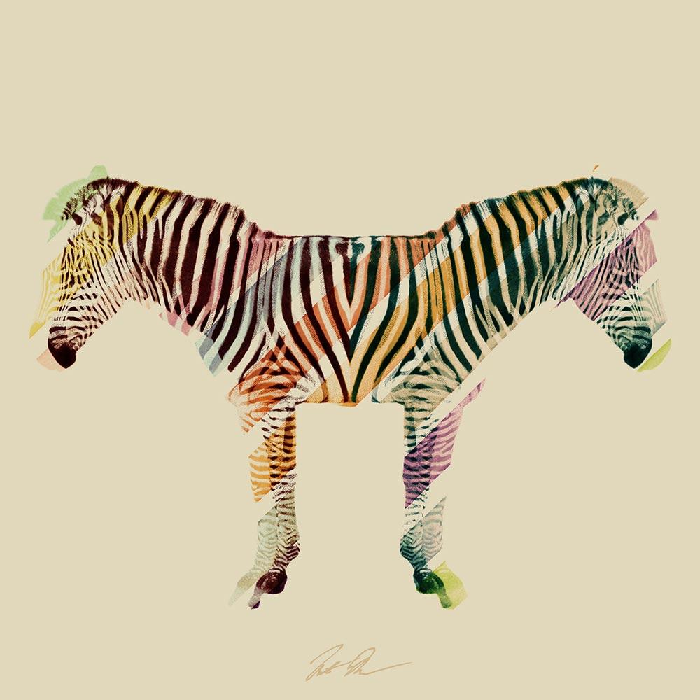 Re-Stocked: Acid Zebra